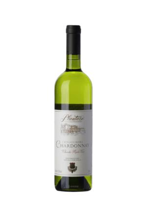 Crnogorski Chardonnay wino czarnogórskie białe wytrawne