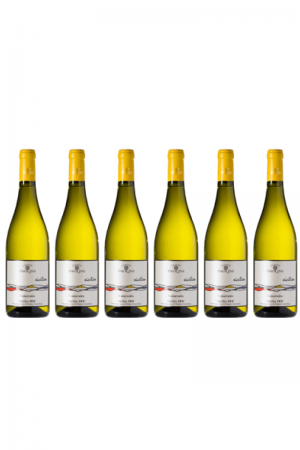Zestaw CATARRATTO SICILIEN DOC wino włoskie białe wytrawne