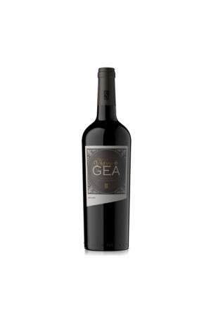 Malbec Reserva Vastago de Gea wino argentyńskie czerwone wytrawne